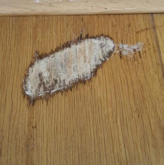 Houten vloer met schroeischade